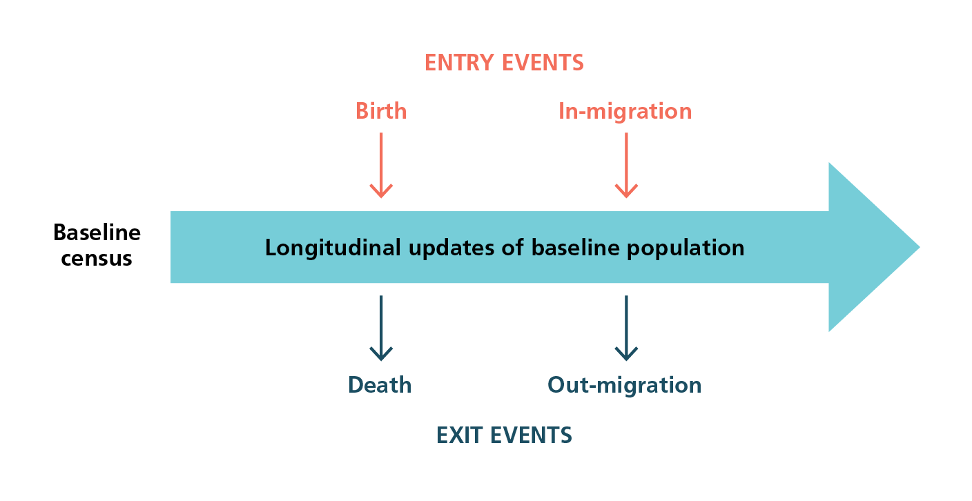 Diagram showing health and demographic surveillance system